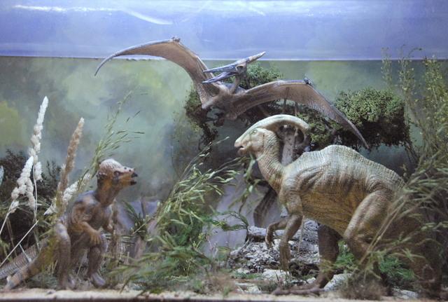 Paquicefalosaurio-pteranodon-parasaurolofus