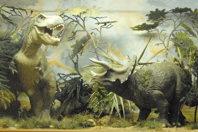 Tiranosaurio-contra-triceratops